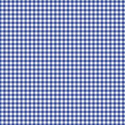Gingham in Bright Blue