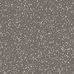 Stardust in Stone