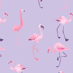 Flamingoes in Viola