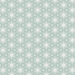 Ornament Stars in Ice