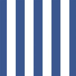 Play Stripe in Blue Jay