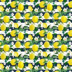Small Lemons in Navy Stripes