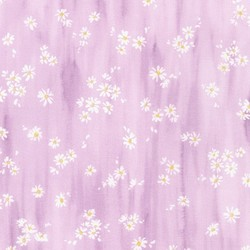 Little Daisy in Lilac