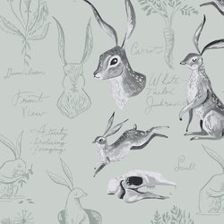 Rabbit Study in Misty