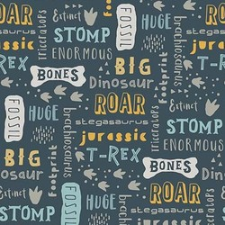 Fossil Words in Navy