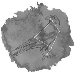Corvus Panel in Charcoal