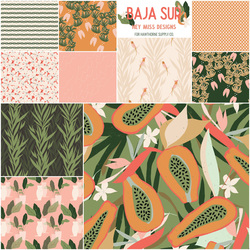 Baja Sur Fat Quarter Bundle