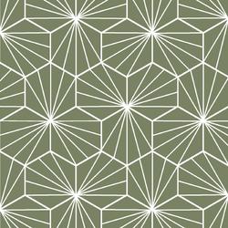 Radiate in Olive