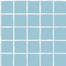 Windowpane in Bluebell