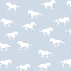 Horse Silhouette in Cirrus