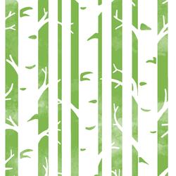 Big Birches in Greenery
