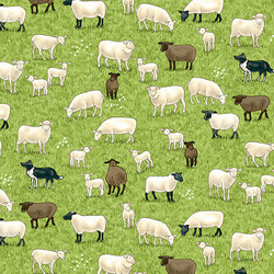 Sheep in Green