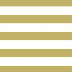 Horizontal Play Stripe in Brass
