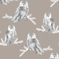 Snowy Owl in Taupe