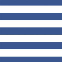 Horizontal Play Stripe in Blue Jay