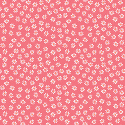Daisies in Bright Pink