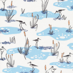 Wetlands in Blue