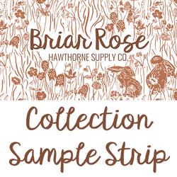 Briar Rose Sample Strip
