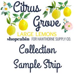 Citrus Grove Sample Strip Large Lemons