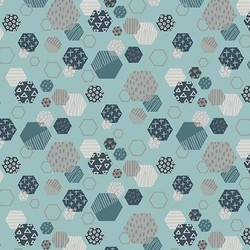 Fossil Hexagon in Blue