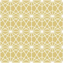 Terrarium in Honey