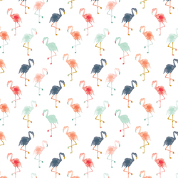 Small Flamingos in Summer