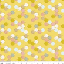 Honeycomb in Sunshine
