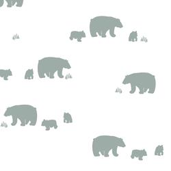Bear Silhouette in Eucalyptus