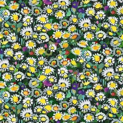 Lawn Daisies in Yellow