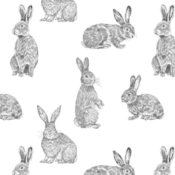 Bunny Hop in Onyx