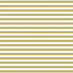 Horizontal Dress Stripe in Brass