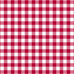 Gingham in Winter Rose