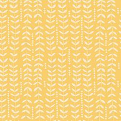 Kelp in Sunshine
