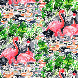 Flamingoes in Multi
