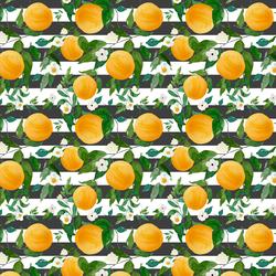 Small Oranges in Onyx Stripes