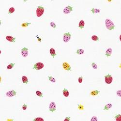 Strawberries in White