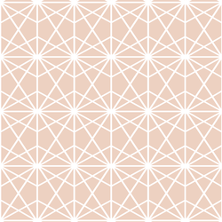 Terrarium in Shell