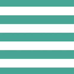 Horizontal Play Stripe in Jade