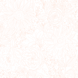 Paperie in Fresh Peach on White