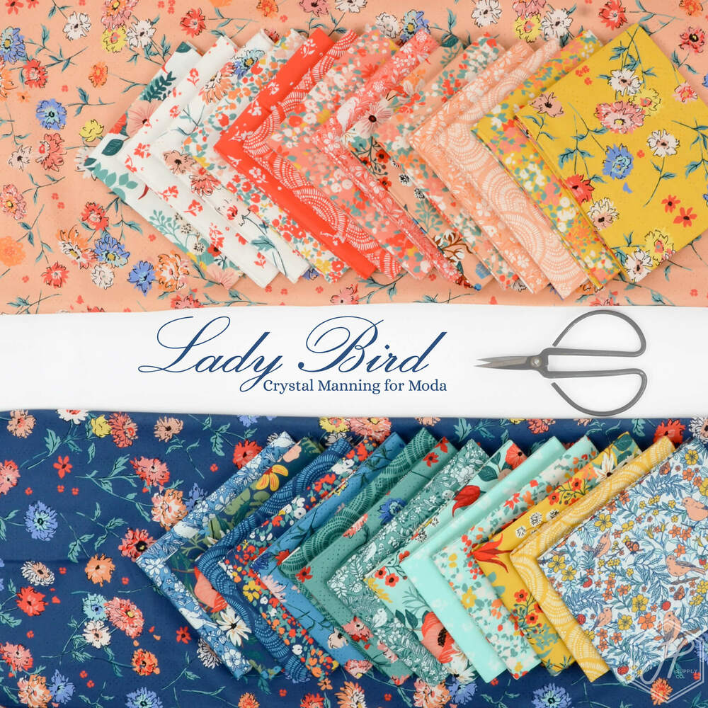 Lady Bird Poster Image