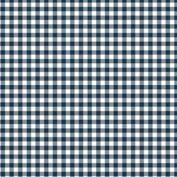 Gingham Check in Deep Navy