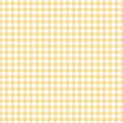 Summer Gingham in Afternoon Sunshine