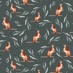 Kangaroos in Deep River