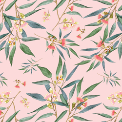 Banksia in Soft Petal