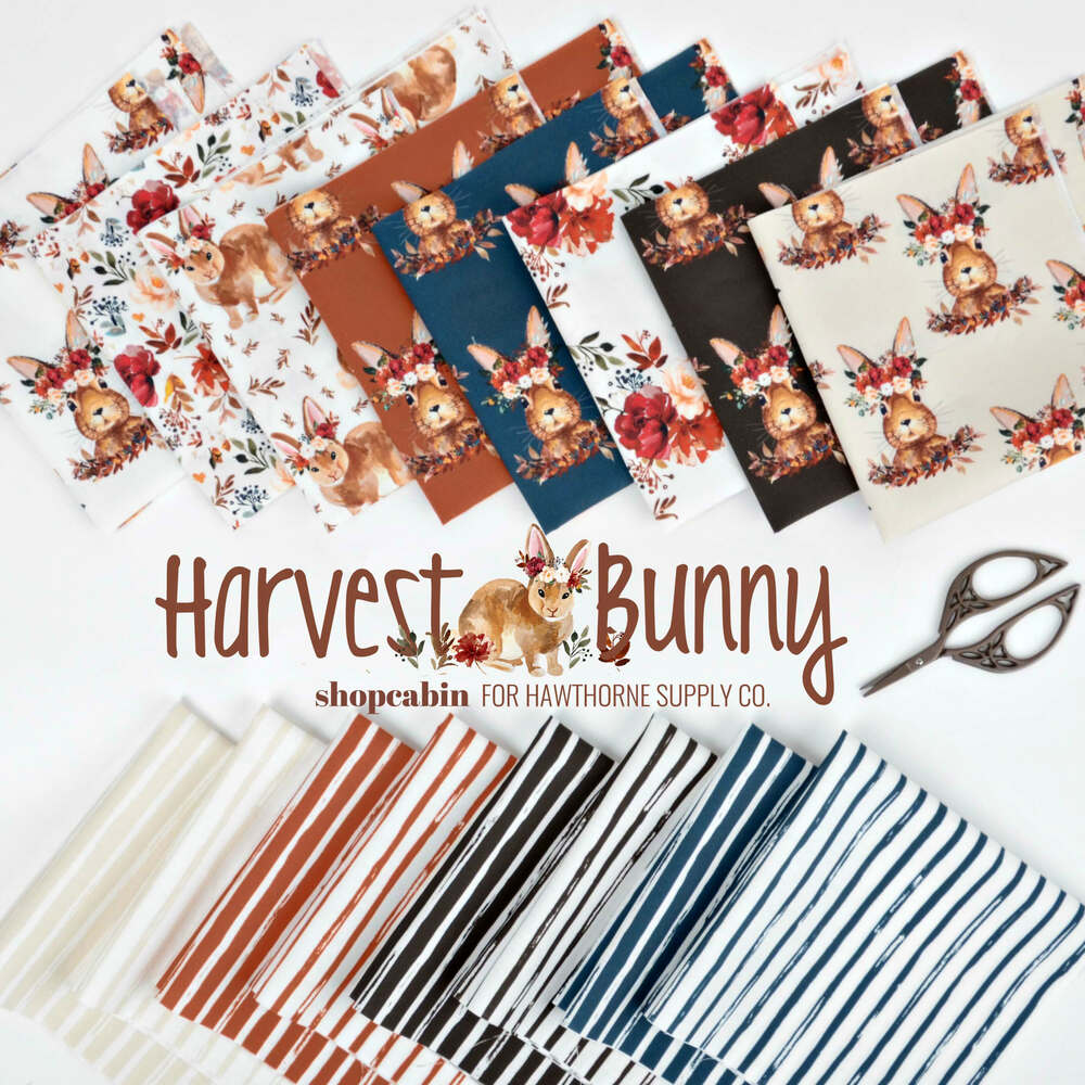 Harvest Bunny Poster Image