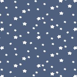 Star Light in Midnight