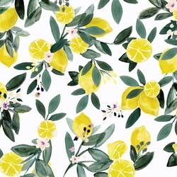 Lemon Grove in White