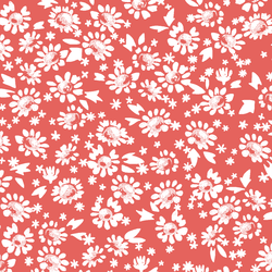 Daisies in Salmon