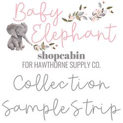 Baby Elephant Sample Strip