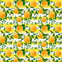 Small Oranges in Lemon Stripes